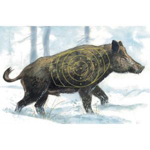 Zielscheibe-jagdzielscheibe-target-schießscheibe-überläufer-wildschwein-sauen